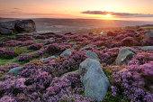 Dawn on Ilkley Moor, West Yorkshire, England