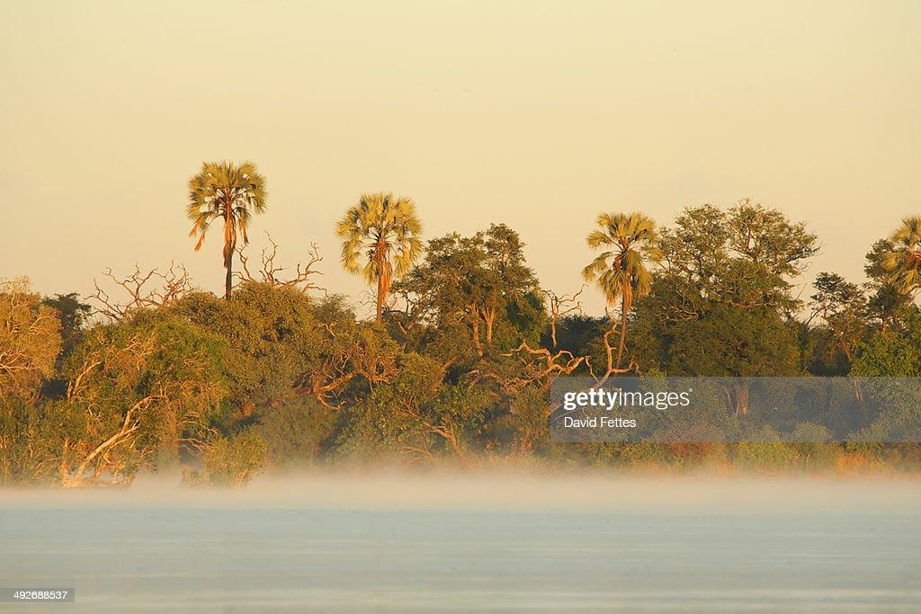 Dawn on the Zambezi River, Simonga, Livingstone, Zambia