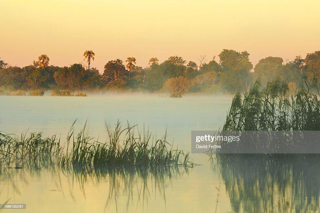Dawn over Zambezi River, Zambia
