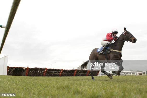 Dawn Street ridden by James Davies during The toteswinger Novices' Hurdle Race