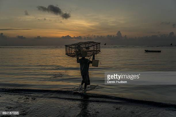 Dawn view of the Indian ocean at Msambweni a fishermen carries his bamboo lobster trap on his head as he sets off to catch the high tide The small...