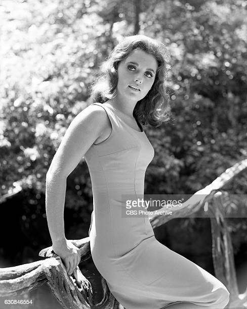 Dawn wells as mary ann phrase