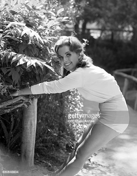 Dawn Wells portrays Mary Ann Summers in the CBS television program 'Gilligan's Island' Image dated July 15 1965 Hollywood CA