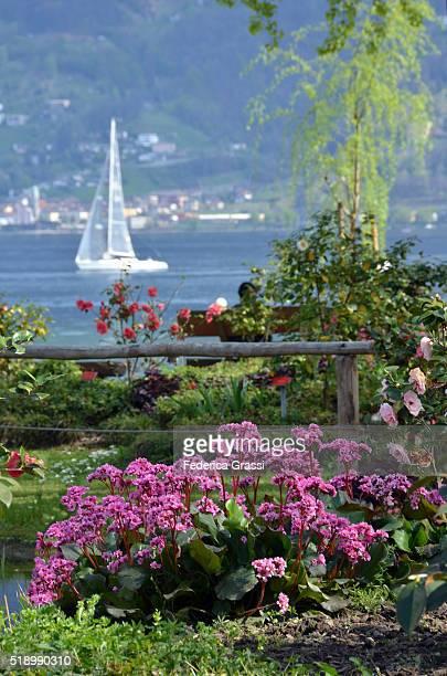 A Day On Lake Maggiore, Locarno, Ticino, Switzerland