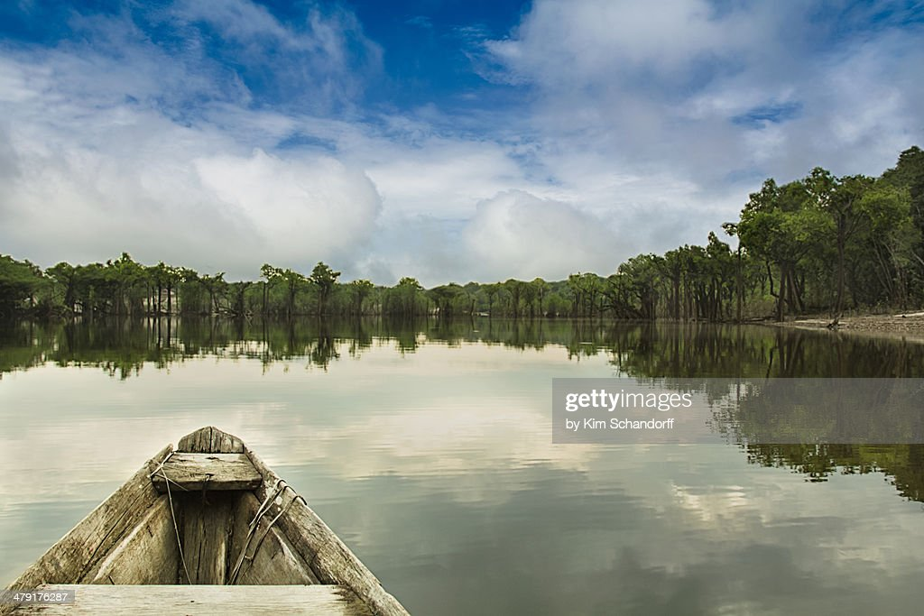 A day on the Amazon