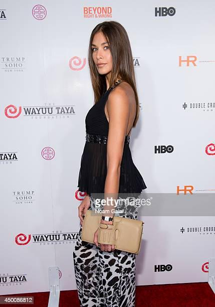 Dayana Mendoza attends the 2014 Wayuu Taya Gala Honoring Kimora Lee Simmons at Trump SoHo on June 4 2014 in New York City