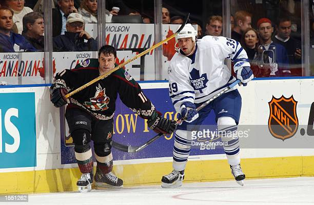 Daymond Langkow of the Phoenix Coyotes and Travis Green of the Toronto Maple Leafs battle along the boards during the game on October 17 2002 at the...