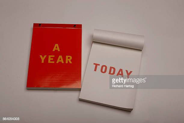 Days a Year from OK by Mick Haggerty is one of the interesting stylish calendars for 2006 photographed in the photo studio Thursday at the LA Times