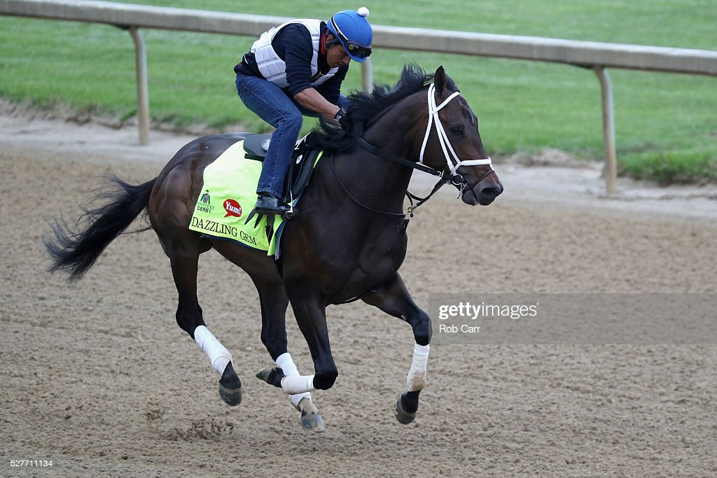 Dazzling Gem trains on the track for the Kentucky Derby at Churchill Downs on May 03, 2016 in Louisville, Kentucky.