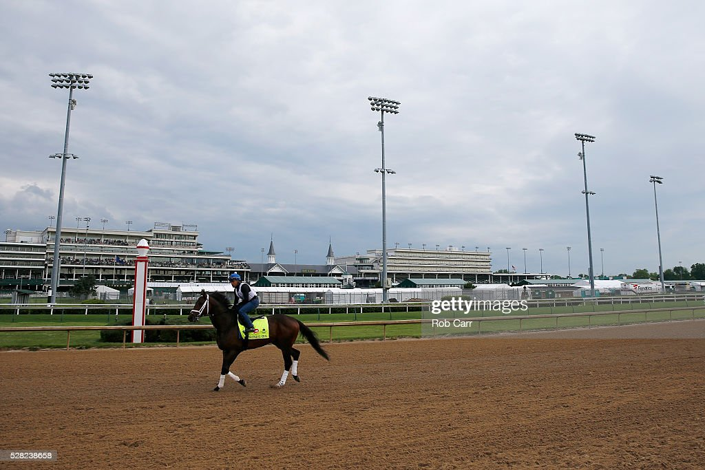 Dazzling Gem trains on the track for the Kentucky Derby at Churchill Downs on May 04, 2016 in Louisville, Kentucky.