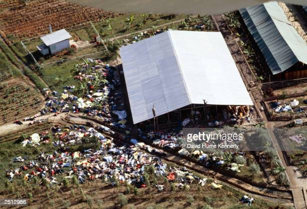 Dead bodies lie around the compound of the People's Temple cult November 18 1978 after the over 900 members of the cult led by Reverend Jim Jones...