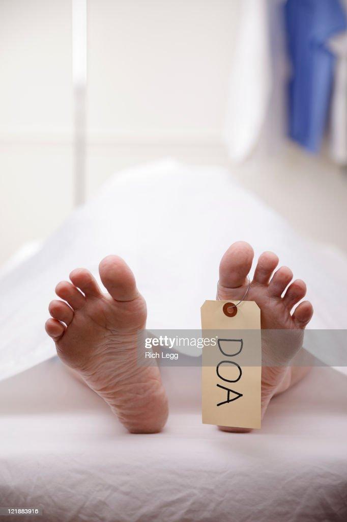Dead Body in Morgue