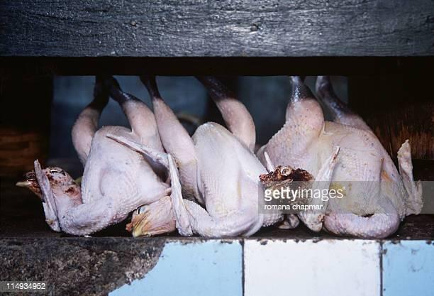Dead chicken on market stall
