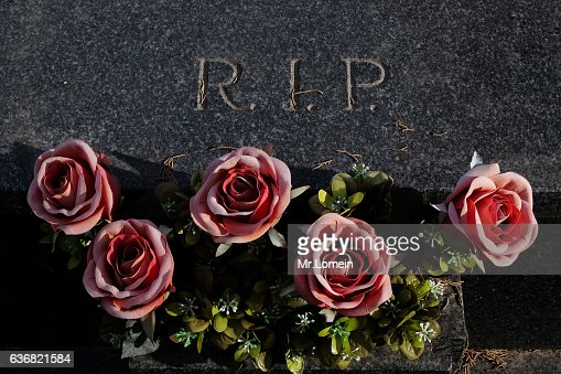 Dead Flowers  Stock Photo