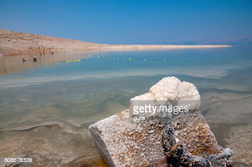 Dead Sea beach : Stock Photo