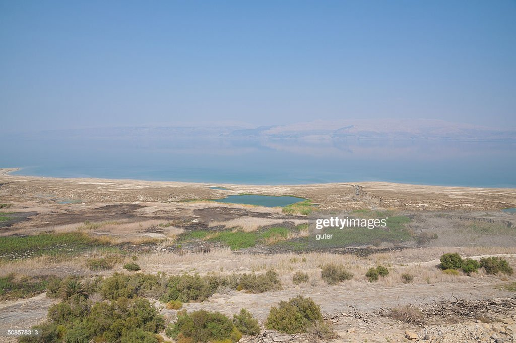 Dead sea landscape : Stock Photo