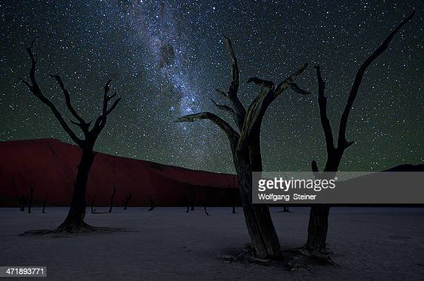 Dead Vlei and Milky Way