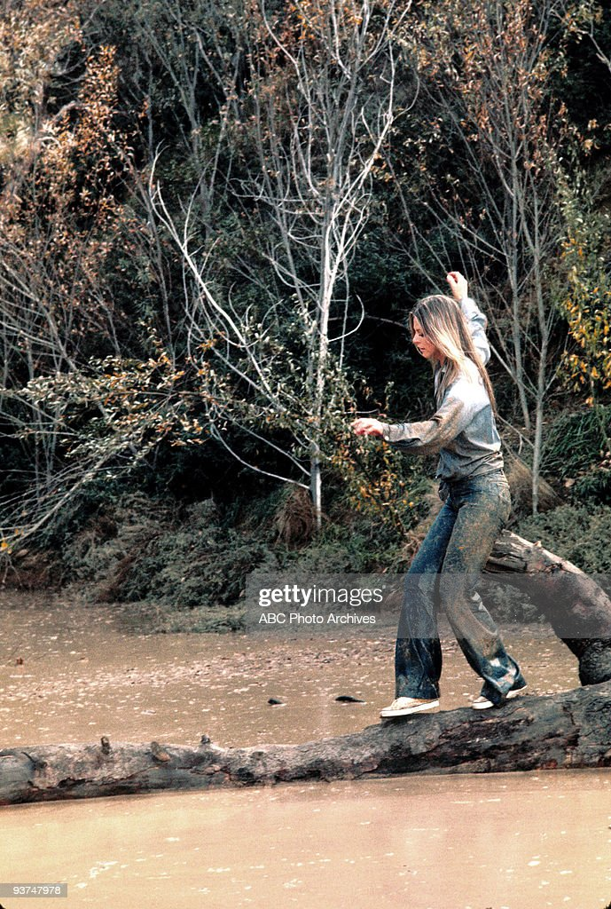 WOMAN - 'Deadly Ringer, Part II' - Season Two - 2/9/77, Jaime (Lindsay Wagner), who was switched with her surgically created look-alike, Lisa Galloway, escaped from prison and was unable to convince anyone of her true identity. ,