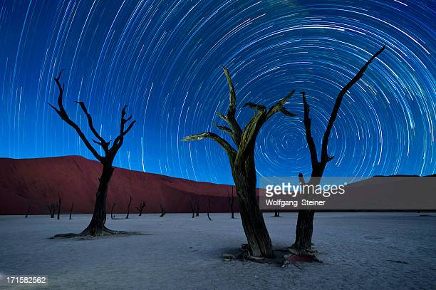 Deadvlei with startrails