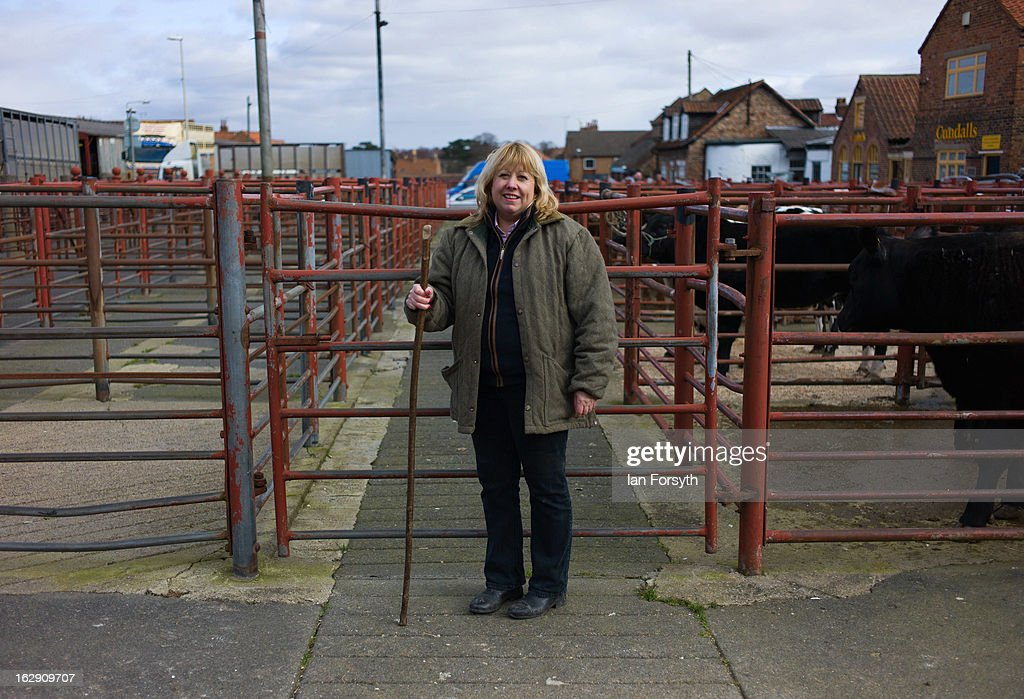 A dealer poses as livestock are bought and sold at a busy auction on March 1, 2013 in Malton, England. The auction takes place at Malton Livestock Auctioneers in the heart of Yorkshire and is one of the busiest in the country. In the wake of the horsemeat scandal British butchers and farmers are seeing a rise in demand for British reared meat, with Tesco's announcing at the National Farmers Union conference in Birmingham, that the world's third largest retailer would be buying more meat from its home market in Britain.
