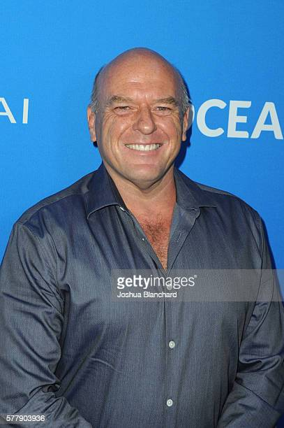 Dean Norris arrives at Oceana Sting Under The Stars on July 19 2016 in Los Angeles California