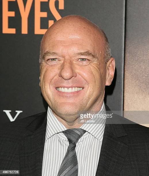 Dean Norris attends the premiere of STX Entertainment's 'Secret In Their Eyes' at the Hammer Museum on November 11 2015 in Westwood California