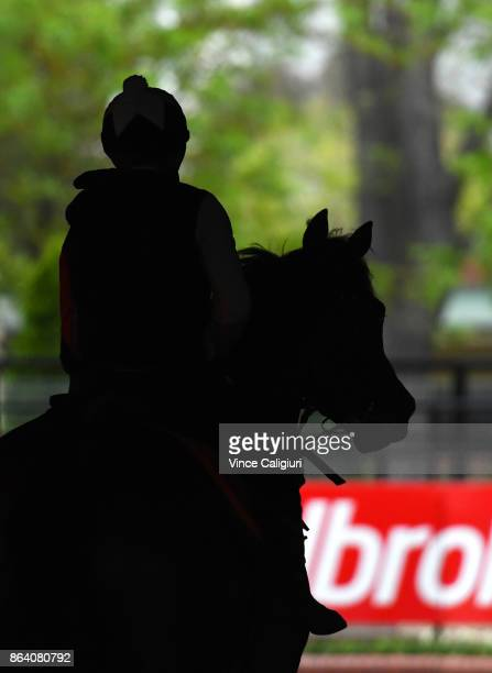 Dean Yendall riding Royal Symphony after a trackwork session at Moonee Valley Racecourse on October 21 2017 in Melbourne Australia