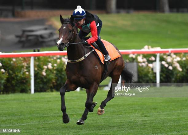 Dean Yendall riding Royal Symphony during trackwork session at Moonee Valley Racecourse on October 21 2017 in Melbourne Australia