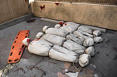 Death bodies in bags after zombie attack or virus epidemy