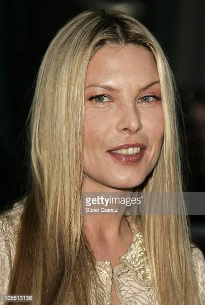 Deborah Kara Unger nude (28 pictures) Hot, 2020, cleavage