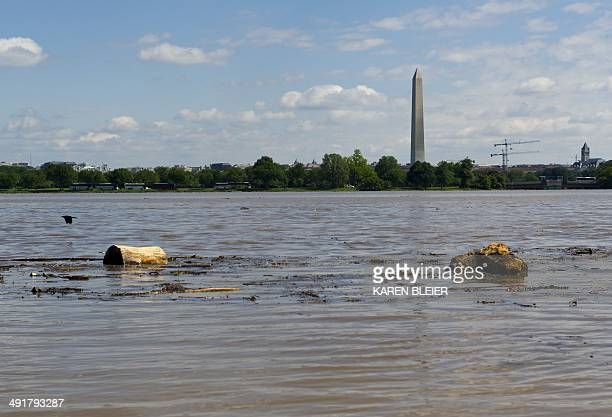 Debris floats down the Potomac River on May 17 2014 along the banks in Arlington Virginia looking towards Washington DC Torrential rains May 15 into...