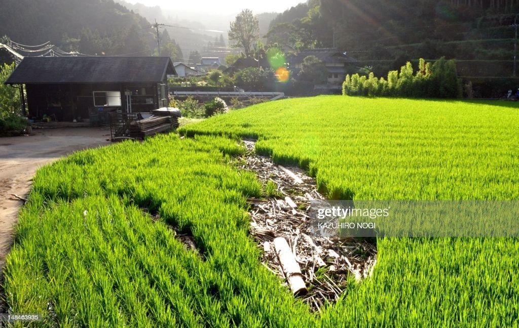 Debris from flooding lies in a paddy field in Ukiha City Fukuoka prefecture on July 17 2012 Floodbattered southwestern Japan braced for a typhoon...