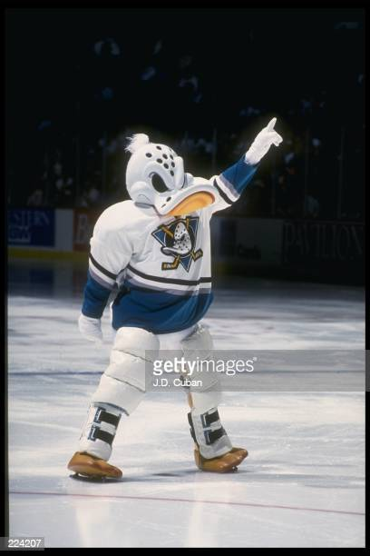 The Anaheim Mighty Ducks mascot exhorts the crowd during a game against the Los Angeles Kings at Arrowhead Pond in Anaheim California