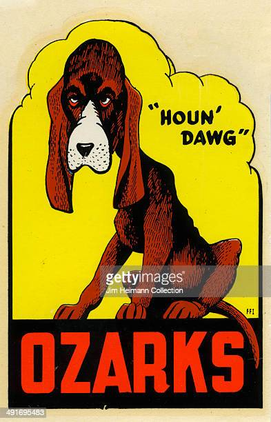 A decal of a dog for Ozarks reads 'Houn' Dawg' from 1949 in USA