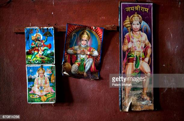 Portraits of the Hindu god Hanuman on a wall at a Akhada or wrestling schools in the town of Kolhapur in India 13 December 2009 Kushti is an ancient...