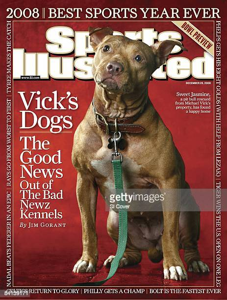 December 29 2008 Sports Illustrated Cover Football Portrait of rehabilitated dog Sweet Jasmine Pit bull formerly owned by suspended Atlanta Falcons...