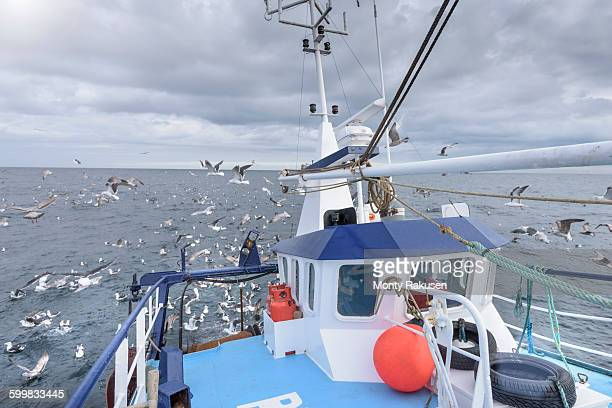 Deck view of fishing trawler with seagulls at sea