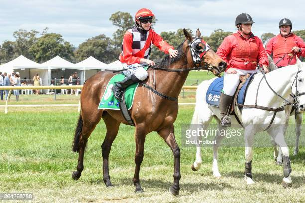 Declan Bates returns to the mounting yard on Normandy Lad after winning McConnell Dowell Martinus Rail BM52 Handicap at Avoca Racecourse on October...