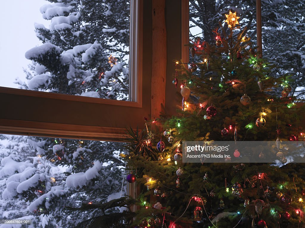 Christmas Tree In Living Room decorated christmas tree in living room snowy fir trees in