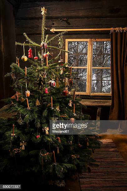 Decorated Christmas tree standing in a farmhouse