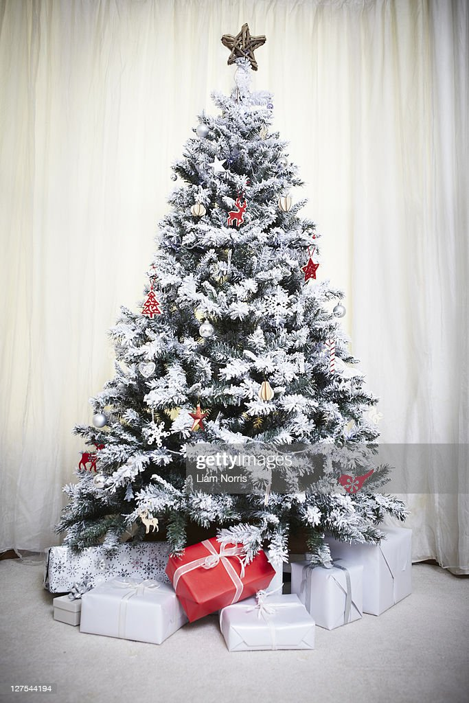 Decorated Christmas tree with gifts : Stock Photo