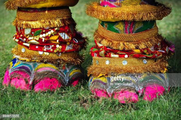 Decorated feet of an elephant at the Elephant Festival, Jaipur Elephant Festival, Rajasthan, India