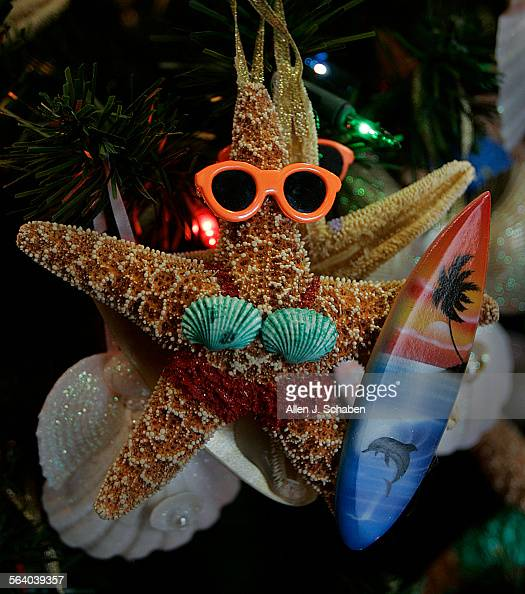 Decorated surfing starfish and seashell ornaments hang on for Miniature tree decorated with sea shells