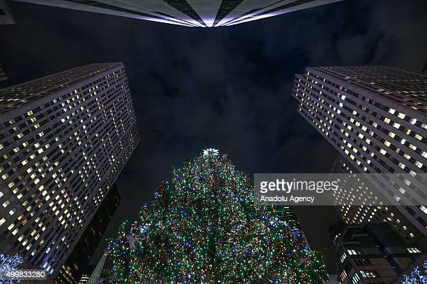 Decorations are seen ahead of the Christmas on December 03 2015 in New York City United States A Norway spruce decorated with more over than 45...