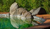 Decorative koi pond in a garden close up