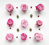 Decorative pattern with pink bright roses, buds and berries on white background. Flat lay, top view, view from above