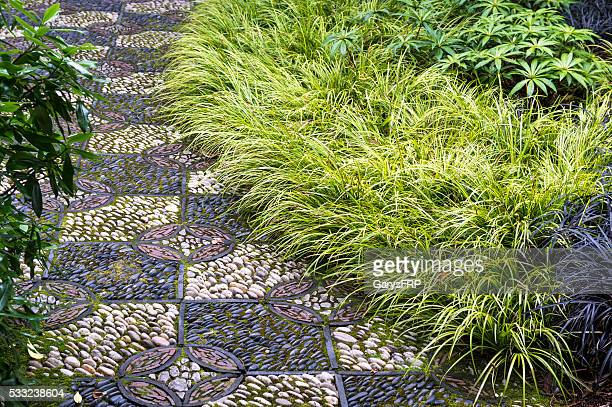 Decorative Stone Path Plants Lan Su Chinese Garden Portland Oregon