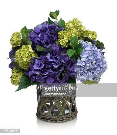 Deep Blue Hydrangea Bouquet on white background