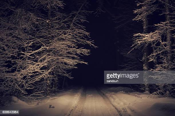 deep foresta