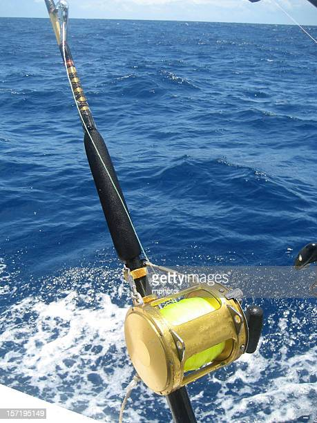 Fishing reel stock photos and pictures getty images for Deep sea fishing northern california